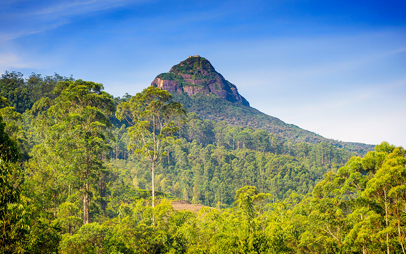 Tahun 2019, Saatnya Explore Sri Lanka yang Indah dan Murah