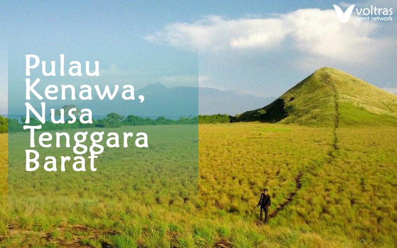 padang rumput